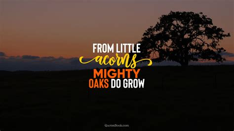 From little acorns mighty oaks do grow - QuotesBook