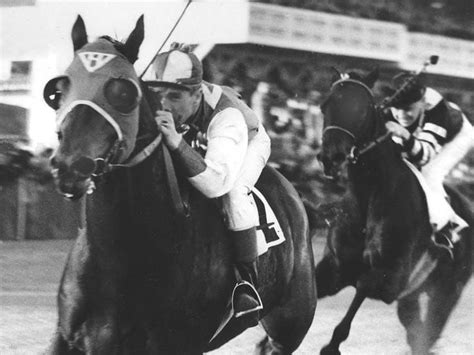 THE WESTERNER: Scientists Extract DNA From Seabiscuit's