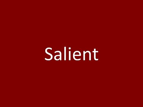 salient - 11 adjectives meaning salient (sentence examples