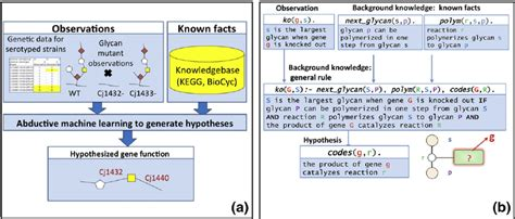 The logic-based machine learning approach to hypothesise
